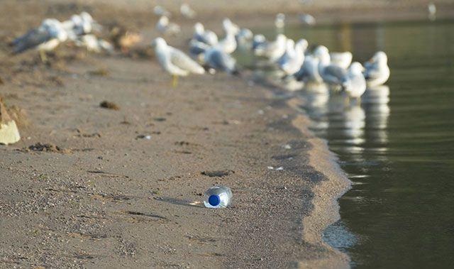Contaminación Botellas de Plástico