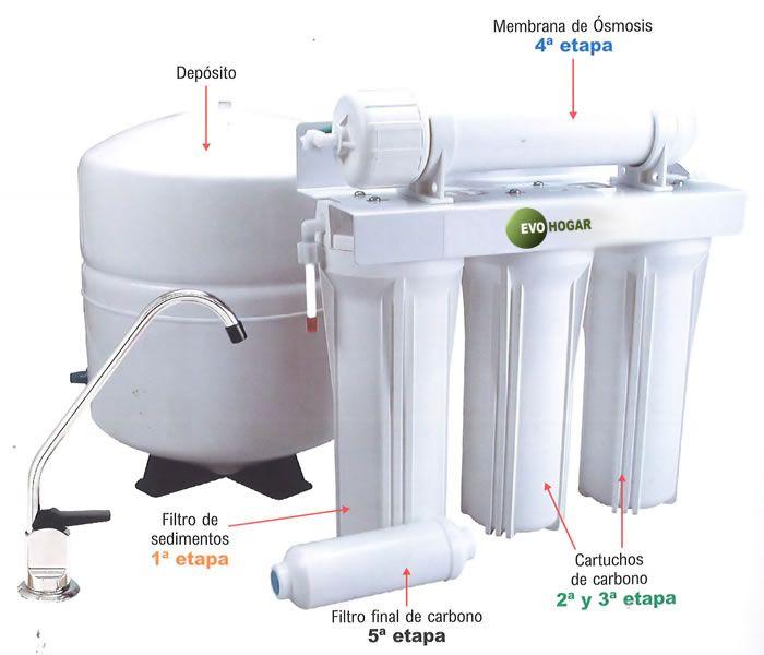 Osmosis 5 Etapas Estándar